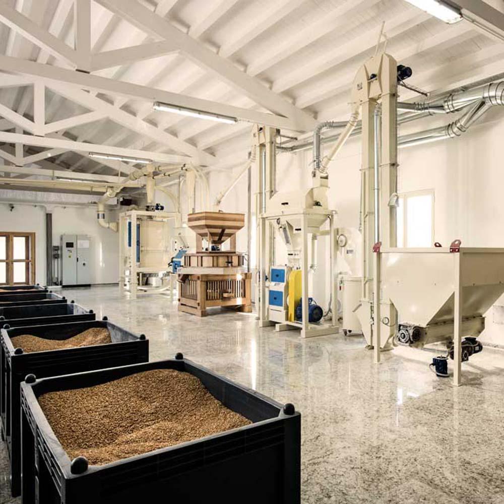 impianto azienda agricola damigella